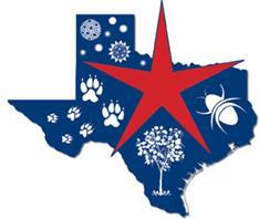 North Texas Allergy & Asthma Associates