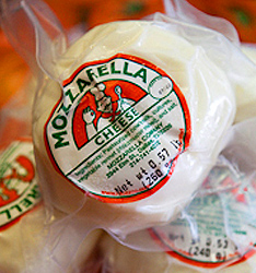 Mozzarella Company