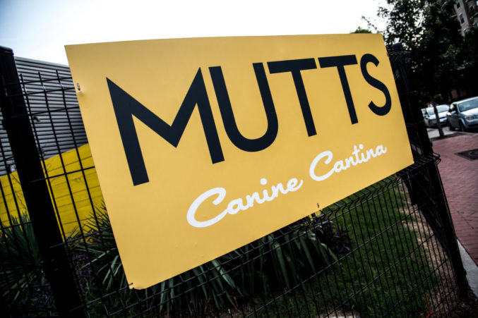 Mutt's Canine Cantina
